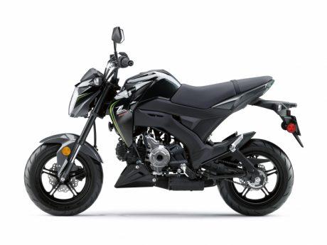 2018 Kawasaki Z125 Pro